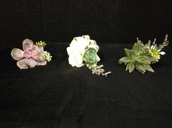 Succulent Boutonnieres and Corsages